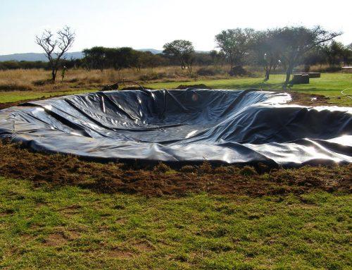 Ornamental Pond – Limpopo